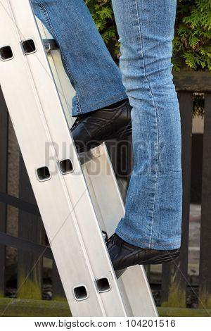 Female Worker Climbing On Ladder In Garden