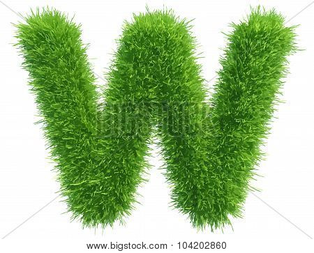 Vector small grass letter w on white background