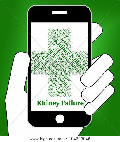 Kidney Failure Indicates Lack Of Success And Affliction