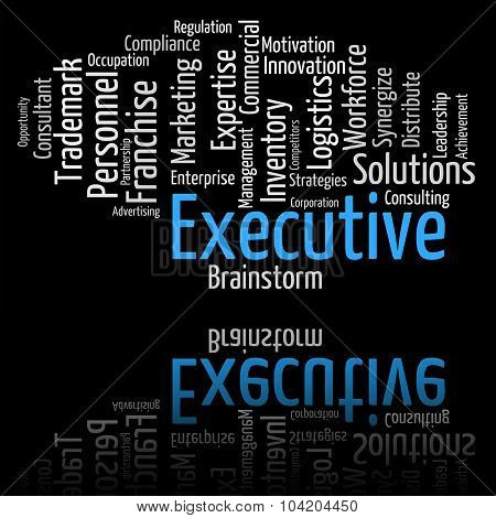 Executive Word Indicates Senior Manager And Md