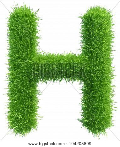 Vector capital letter H from grass on white background