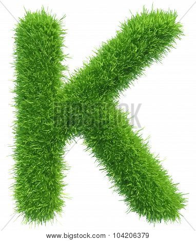 Vector capital letter K from grass on white background