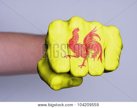 Fist Of A Man Punching, Wallonia