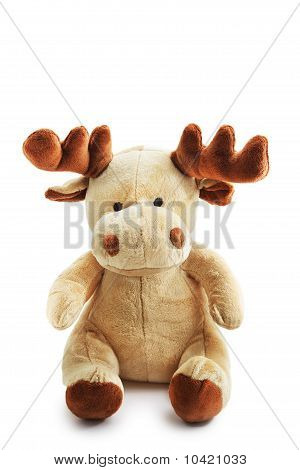 Moose Deer Isolated On White