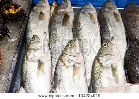 Fresh Fish In Restaurant Market