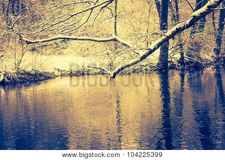 Vintage Photo Of River In Forest At Winter