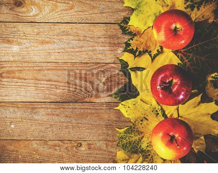 Autumn background with colorful leaves and apples on rustic wooden board. Thanksgiving and Halloween holidays concept. Harvest rural fall season. Space for your text.