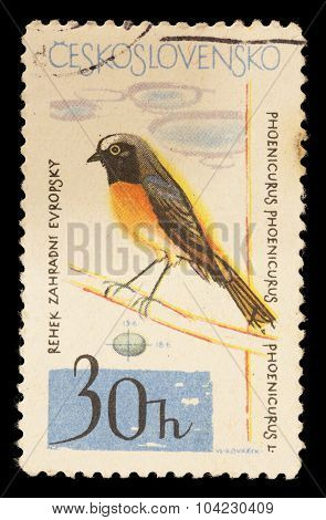 Postage Stamp Printed In Czechoslovakia Showing A Common Redstart, Phoenicurus Phoenicurus