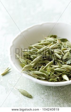 Organic green oats ( avena sativa)