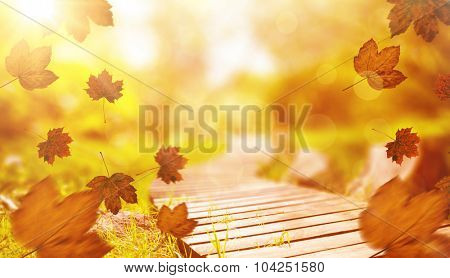 Autumn leaves pattern against wooden trail across countryside