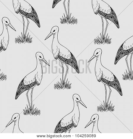 Vector Monochrome Background With Storks, Hand Drawn Graphic Stork Seamless Pattern