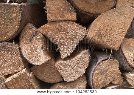 Piles of logs