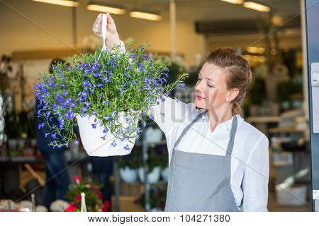 Beautiful mid adult female florist holding flower plant in shop