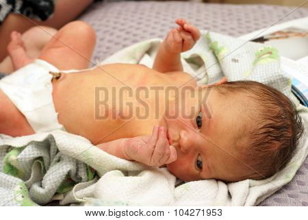 Alert Newborn Boy