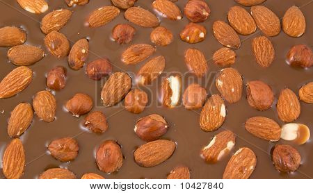 Almonds And Hazelnuts Chokolate