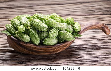Hop cones in the wooden tray on the wooden table.