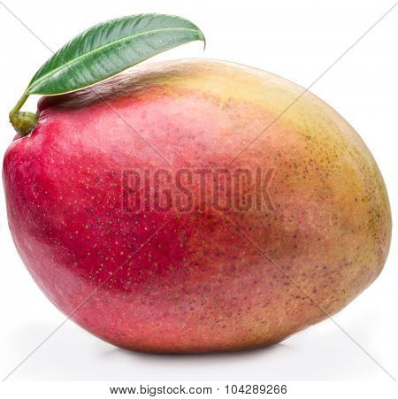 Mango fruit with leaf isolated on a white background. The picture of high quality.
