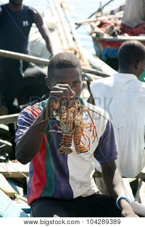 LABADEE, HAITI - FEBRUARY 27, 2015: A fisherman holds up his catch of Spiny Lobster he hopes to sell or eat for dinner while in a fishing boat off the shores of Labadee, Haiti.