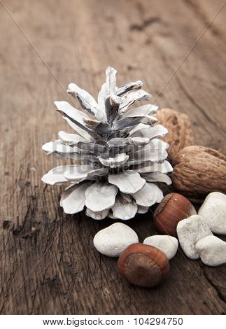 Fir cone next to various nuts