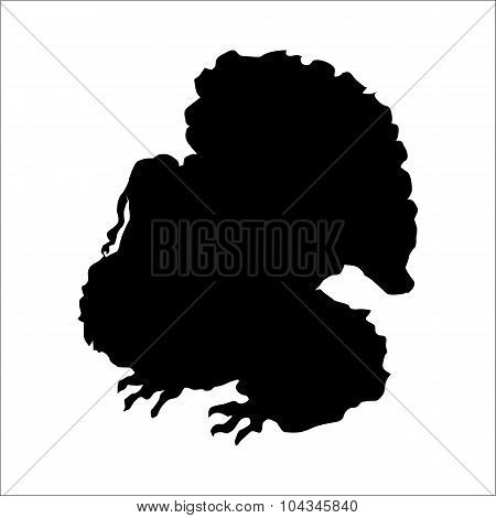 Turkey silhouette