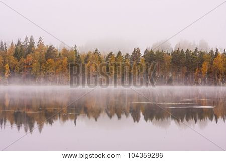 Foggy lake scape and vibrant autumn colors in trees