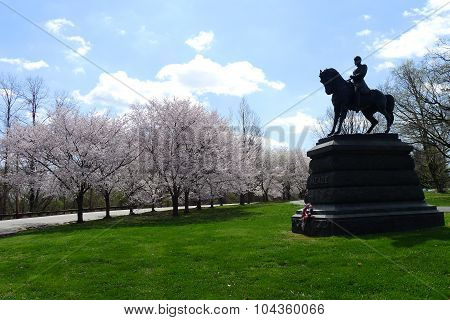 General George G. Meade Equestrian Monument and Cherry Blossoms