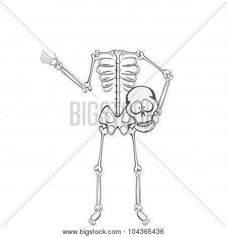 Skeleton Buddy lost his Head