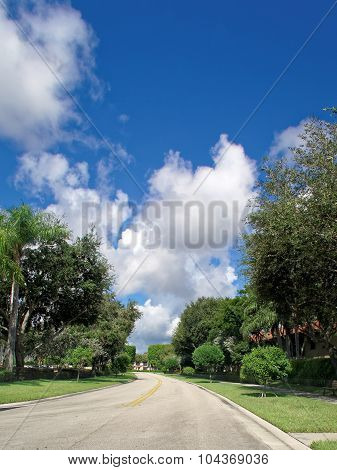 Empty residential street in Florida suburbs