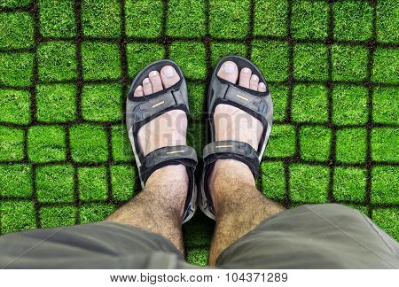 Man Standing On The Grass