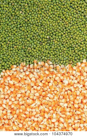 Green Mung Beans And Corn Grains