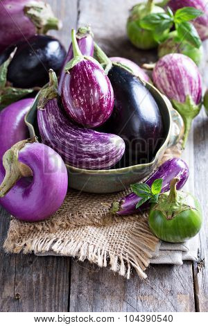 Eggplants of different variety on the table