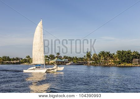 Sailing Boat In The Canal In Fort Lauderdale