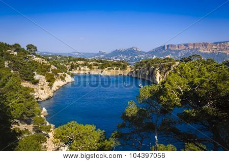 Arbor Of Port Miou At Cassis City, France