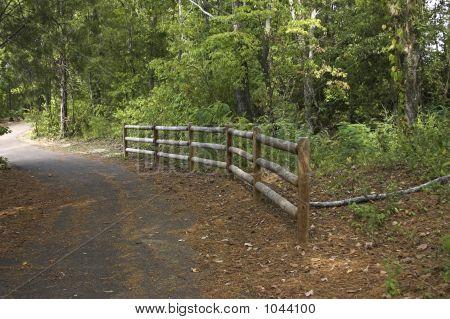 Jogging Trail 2