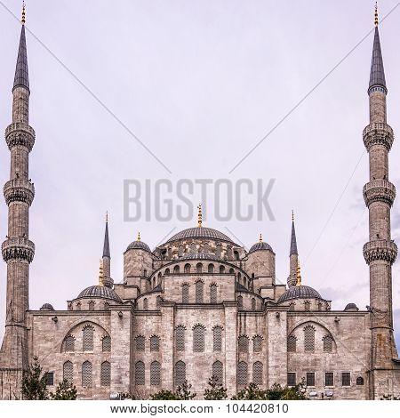 Blue Mosque Rear Side