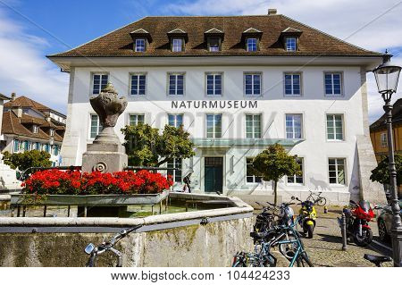 The Natural History Museum In Solothurn