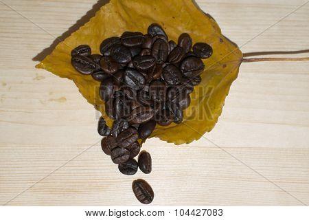 Coffee beans lying on autumn leaf