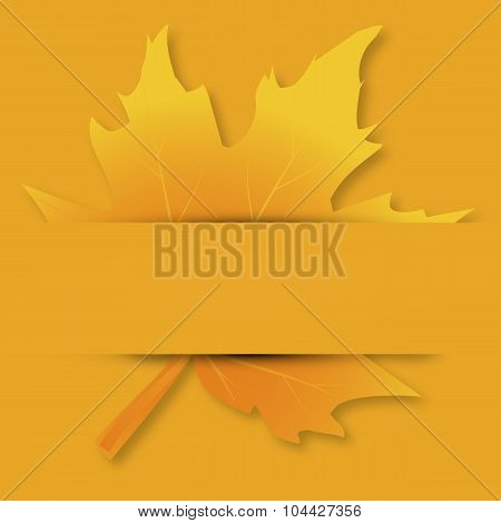 Autumn Maple Leaf On A Postcard