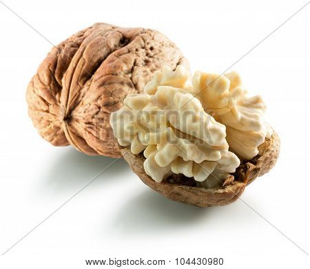 Walnut With Nucleus Isolated On The White Background