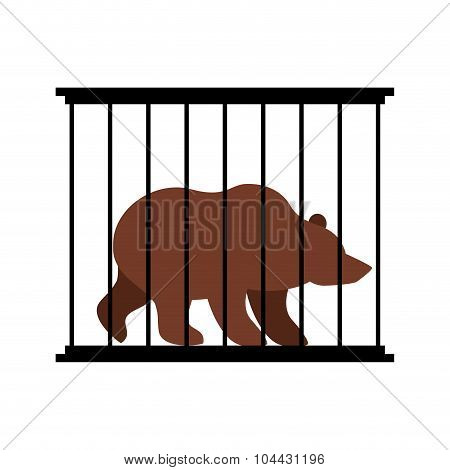 Bear In  Cage. Animal In Zoo Behind Bars. Big Beast Grizzly Wild Animal In Captivity. Dangerous Anim