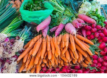 Carrots, radish and herbage