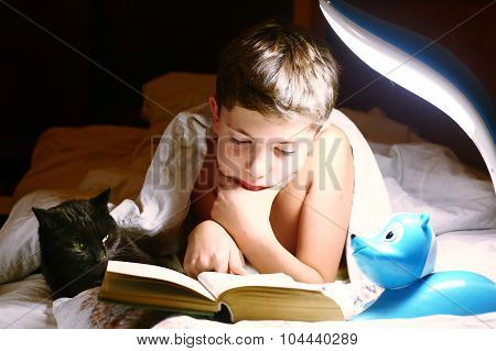 Boy Read Book With Cat Before Sleeping