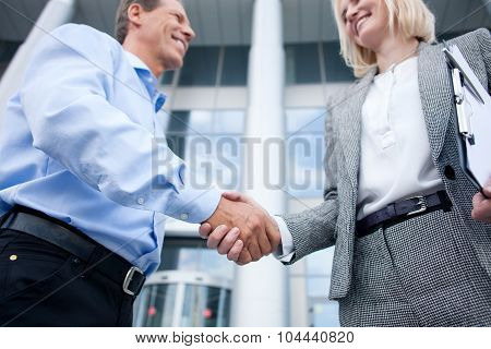 Skillful colleagues are greeting each other with handshake