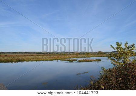 wet marsh land