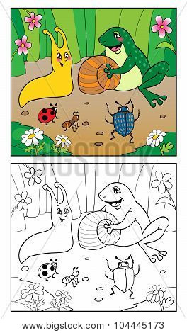Coloring Book. Illustration Of Snail, Insects And Frog.