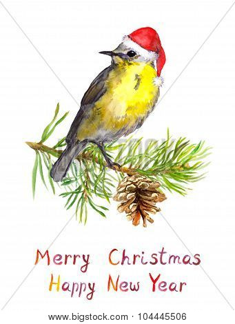 Bird on christmas tree with pine cone. Watercolor postcard