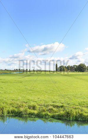 Traditional Dutch a field.