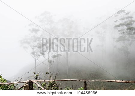 Fogs on Western Ghat Hills