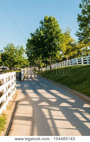 Country Road Surrounded The Horse Farms With Evening Fence Shadows.