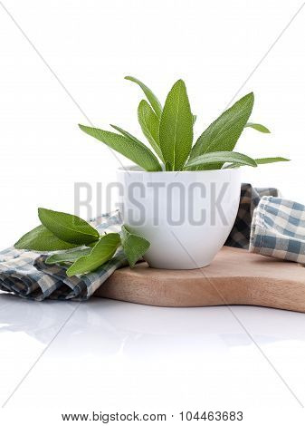 Branch Of Fresh Sage Or Salvia In Bowl On Cutting Board Isolate On White Background.